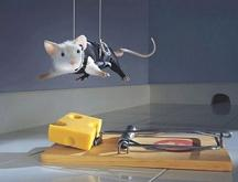 mi-mouse-703866.jpg
